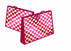 Expander File Pink Hearts